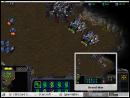 Starcraft and Compiz