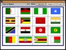 Flag exercise