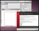 Flash CS5 on Lucid
